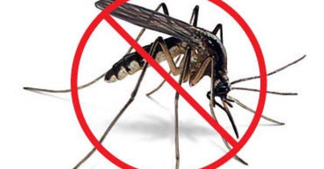 Phun thuốc diệt muỗi có độc hại hay không